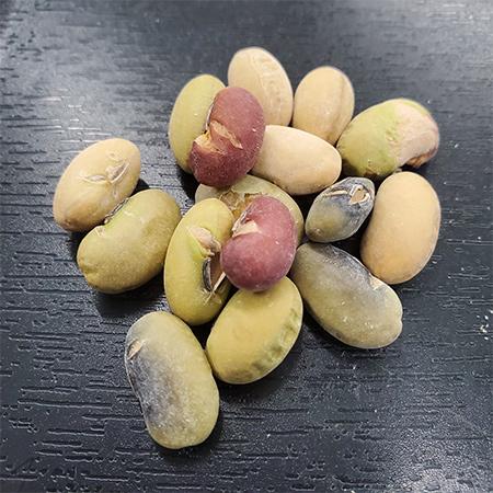 のびのびおやつ 煎り豆(塩) 【のびのび農園】の中身画像