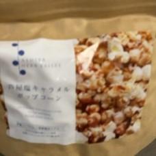 シーソルトポップコーン 塩キャラメル味 【芦屋ハーブバレーパルセイユ】の中身画像