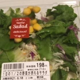 1日の1/2の野菜が摂れるサラダ 【わかば農園】の中身画像
